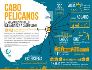 NPJ-CP-CABO-PELICANOS_infografico